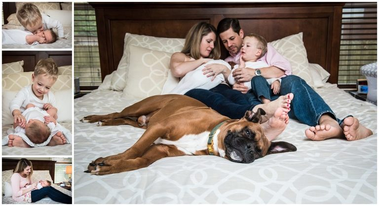 at home with dog lifestyle newborn session